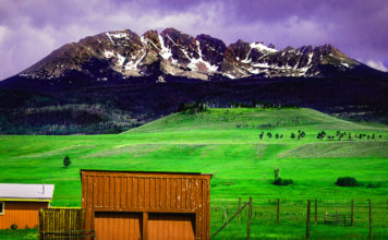 How to Perform Due Diligence Before You Buy Farmland